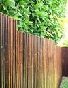 DE-COmmerce Robuster Bambus Holz Sicht Schutz Zaun ATY NIGRA hochwertiger Windschutz Terrasse, Balkon, Garten Bambusrohr Zaun mit geschlossenen Rohren (HxB) 120 cm x 250 cm