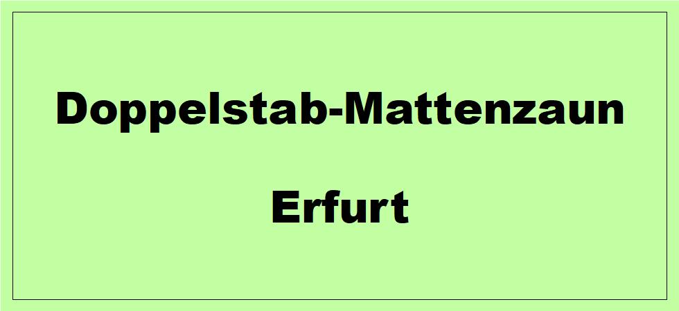 Doppelstabmattenzaun + Sichtschutz in Erfurt Thüringen preiswert kaufen
