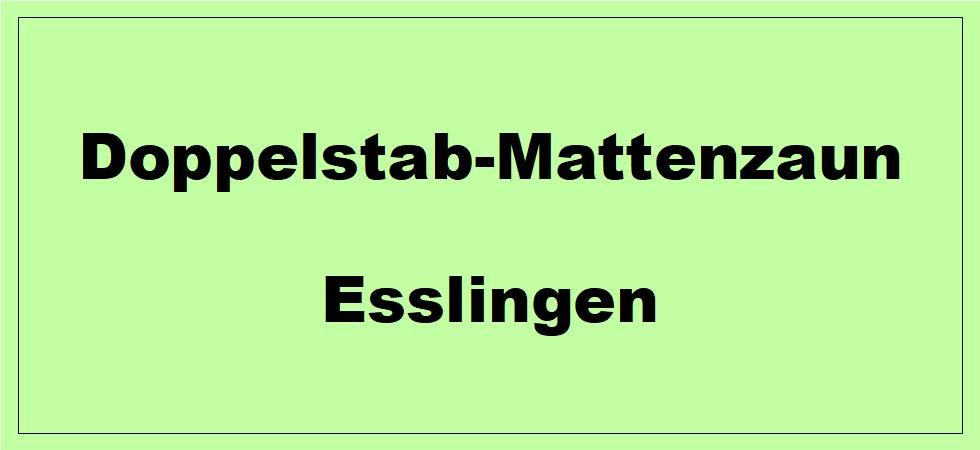 Doppelstabmattenzaun + Sichtschutz in Esslingen am Neckar Baden-Württemberg preiswert kaufen