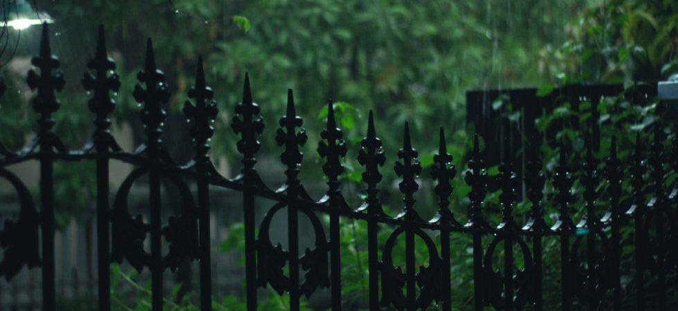 Doppelstabmattenzaun Kaufberatung - Preise, Sichtschutz, alle Informationen zum beliebten Metallzaun mit Gitterstabmatten, Zubehör. (Quellennachweis zu diesem Bild: pexels.com)