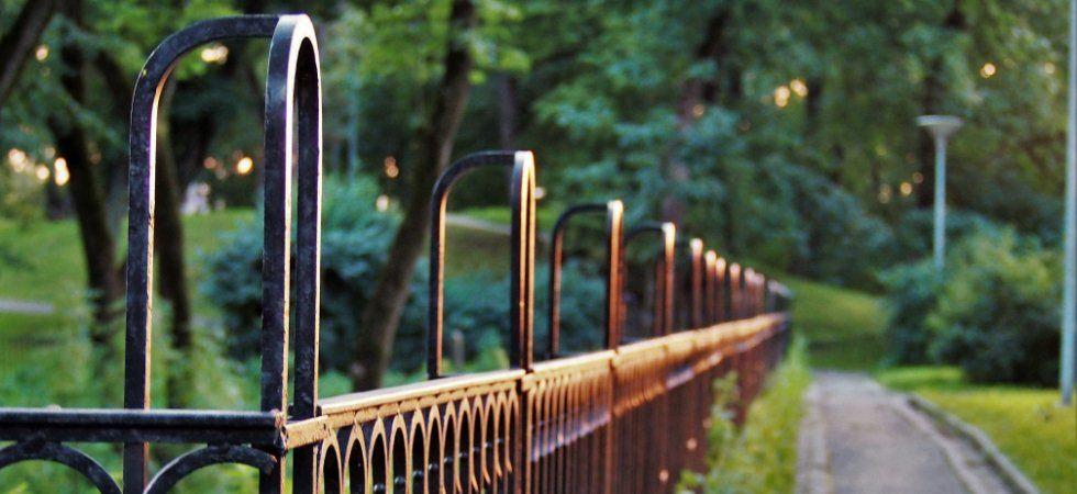 Kaufberatung Doppelstabmattenzaun - Zubehör, Sichtschutz, alle Informationen zum beliebten Metallzaun mit Gitterstabmatten, Preise. (Bild-Quelle: pexels.com)
