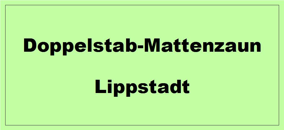 Doppelstabmattenzaun + Sichtschutz in Lippstadt Nordrhein-Westfalen preiswert kaufen | Preislisten, aktuelle Angebote, Kaufberatung und Preise für Doppelstabmatten-Zaun...
