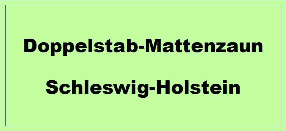 Doppelstabmattenzaun in Schleswig-Holstein kaufen