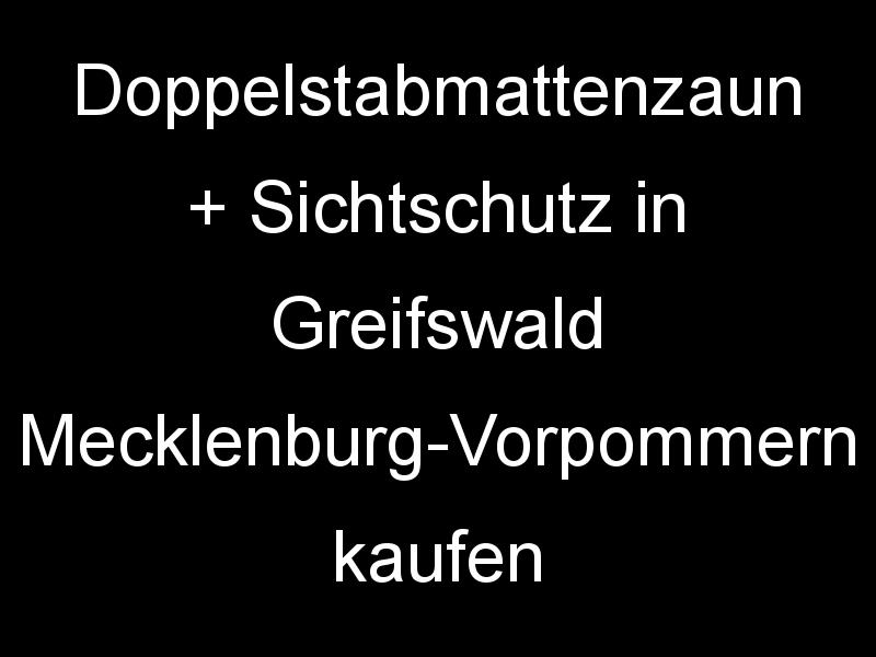 Doppelstabmattenzaun + Sichtschutz in Greifswald Mecklenburg-Vorpommern kaufen